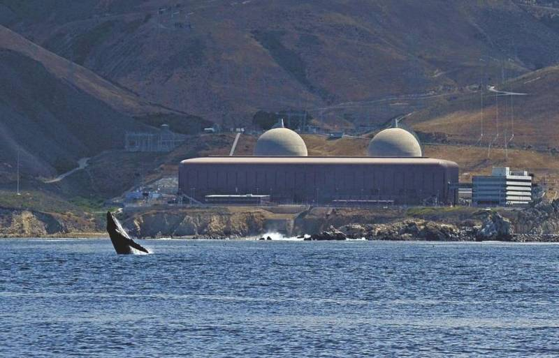 whale diablo